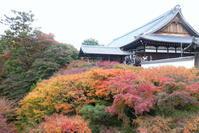 秋の京都 バスツーリング12 東福寺2 - Photograph & My Super CUB110 【しゃしんとスクーター】