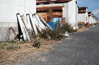 町角ニャンコ・2021年初猫撮り@堅田漁港其の二 - デジタルな鍛冶屋の写真歩記