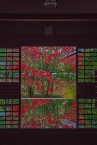2020京都紅葉~興臨院 - 鏡花水月