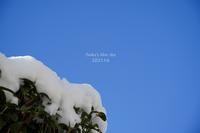 雪の朝 - FUNKY'S BLUE SKY