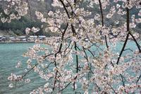 かくれ里の春 ~菅浦~ - 雲母(KIRA)の舟に乗って