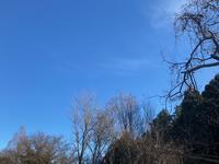青空と低温 - ひとり言