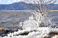 冬の琵琶湖の出来事。 - 京都を中心に山口真一写真事務所は、七五三・お宮参りの記念撮影・年賀状用写真・ペット写真等、撮ります!