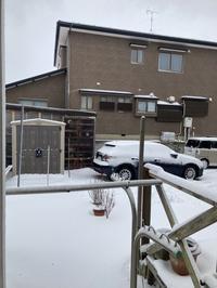 雪 - ciao.n