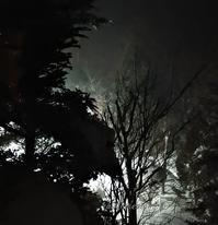 この冬は寒い!(*_*) - 標高480mの窓からⅡ