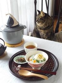 無病息災を願って・・・七草粥 - キッチンで猫と・・・
