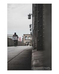 Delivery - ♉ mototaurus photography