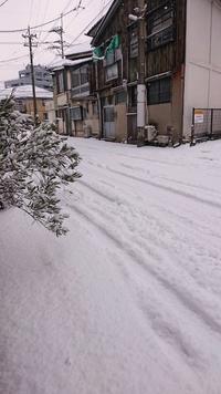 積雪 降雪で開店休業 - CELESTE アクセサリーと古道具