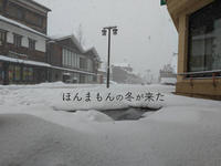 どうもこりゃ大雪に… - 酎ハイとわたし