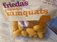 Kumquats in USA (アメリカのキンカン) - ファルマウスミー
