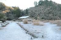 初雪と初氷 - 千葉県いすみ環境と文化のさとセンター