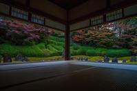 2020京都紅葉~光明院 - 鏡花水月