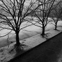 記憶の欠片 - Life with Leica