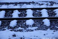 冬が本気出す。 - PTT+.