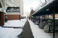大寒波にかかわらず雪の少ない札幌南部 - 照片画廊