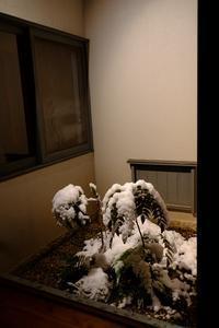 午前0時の雪景 - きずなの家創り