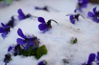 寒くても、 - FUNKY'S BLUE SKY