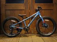 cannondale Cujo 20+ - KOOWHO News