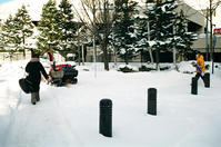 芝生回りの雪の現況 - 照片画廊