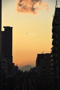 Tokyo 富士san SPOT #1-2 - + Spice to life