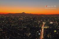 Tokyo 富士san SPOT #11 - + Spice to life