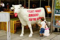ヨーロッパアルプスの牛のオブジェ - エーデルワイスPhoto