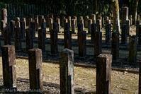 七本官軍墓地 - Mark.M.Watanabeの熊本撮影紀行