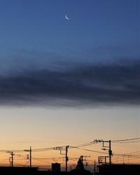 有明の月 - La Dolce Vita 1/2