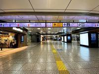 Coming of age day, 2021, 6:40 a.m. , Tokyo Station - いや、だから 姉ちゃん じゃなくて ネイチャー・・・ その2