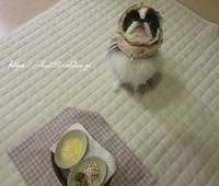 音量注意ね(笑)☆彡ボーンスープ作り - 狆の茶々丸