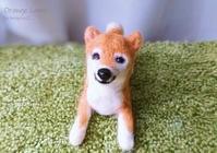 柴犬 - Orange Lamp