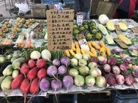 彩り豊かな鎌倉野菜に元気をもらいに - 海辺のセラピストは今日も上機嫌!