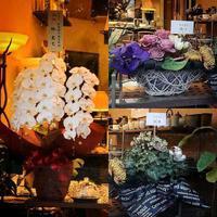 8周年 お祝いのお花を頂きました♪ - Salon de deux H