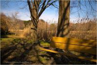 公園のベンチ - muku3のフォトスケッチ