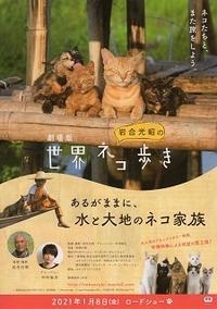 『岩合光昭の世界ネコ歩き/あるがままに、水と大地のネコ家族』(2021) - 【徒然なるままに・・・】