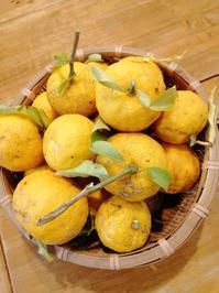 手作り柚子ポン酢&柚子味噌 - タワラジェンヌな毎日