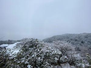 びっくりの積雪 - Kaz's Blog