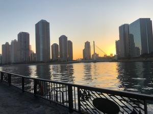 冷たい空気と夕日に映える散歩コース - やさしい光のなかで