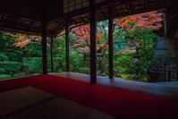 2020京都紅葉~桂春院・侘の庭の紅葉(再訪) - 鏡花水月