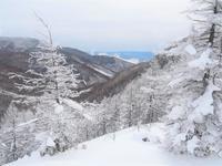 烏帽子岳雪山ひとり歩き2021.1.11(月) - 心のまま、足の向くまま・・・