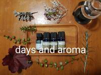 アロマブレンドのきっかけ。 - days and aroma