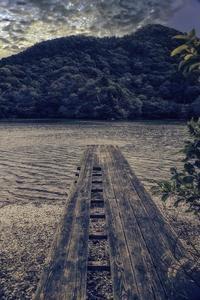 桟橋 - の~んびりと・・・