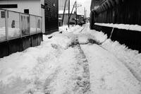 コロナの年に大雪が降った#04 そしてグチャグチャ雪が残った。 - Yoshi-A の写真の楽しみ