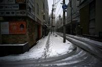 コロナの年に大雪が降った#07大雪への序章 - Yoshi-A の写真の楽しみ
