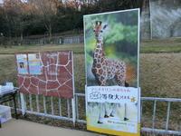 キリンのカンナちゃん - 緑区周辺そぞろ歩き