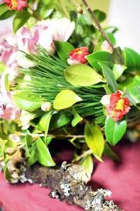 新春のお花です(^^♪ - お花に囲まれて