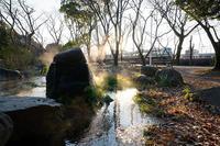 冷え込んだ朝@梅小路公園 - デジタルな鍛冶屋の写真歩記
