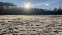 雪降るも雪解けのスピードいと早し。フィールドの様子は? - 北軽井沢スウィートグラス