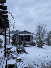 雪の朝&ヒヤシンスのその後 - CROSSE 便り