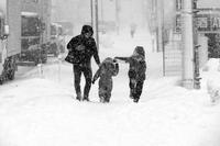 コロナの年に大雪が降った#08  吹雪だった20210108 - Yoshi-A の写真の楽しみ